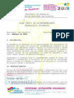 Plan de Acompañamiento Pedagógico Febrero 2019.docx