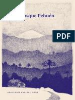 Bosque Pehuen Libro