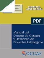 Manual de Organizacion Direccion de Proyectos Estrategicos V2