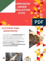 CUI - Corrosion Under Insulation
