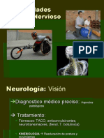 Introduccion Del Sistema Nervioso