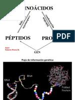 Aminoácidos_péptidos_proteínas.pdf