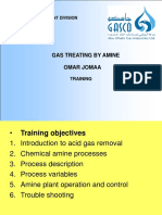 Gas Treating by Amine