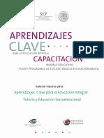 Curso Desarrollo Socioemocional y Tutoría.pdf