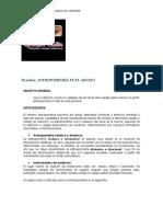 Documento Antropometria
