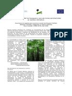 Vulnerabilidad_de_los_bosques_y_sus_servicios_ambientales_al_cambio_climatico.pdf