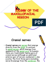 01 Physiology of Maxillofacial Region