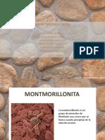 Exposición Montmorillonita