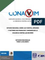 Estudio_Violencia_contra_Mujeres._Zona_n.pdf