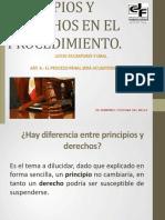 PRINCIPIOS Y DERECHOS EN EL PROCEDIMIENTO. derecho electoral.pdf