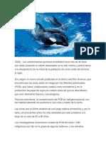 Cnn Noticias Ambientales