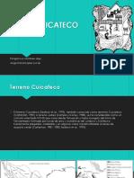 TERRENO CUICATECO.pptx