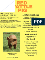 red wattle pig - poster example name edit