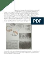 Biología de Las Patologías
