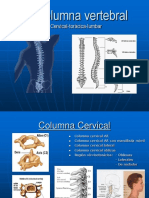Exploracion Columna.pdf