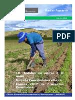 radar_agrario.pdf
