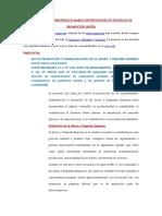LINEAMIENTOS ESTRATÉGICOS MARCO INSTITUCIONAL DE POLÍTICAS DE PROMOCIÓN.docx