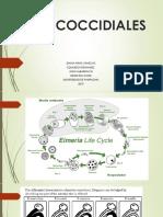 ANTICOCCIDIALES (2)