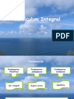 Curriculum Integral