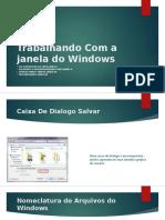 Trabalhando Com a Janela Do Windows
