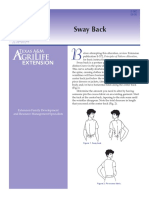 E382 pattern alteration- sway back sewing modification