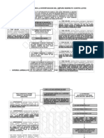 Diagrama de Flujo Amparo Contra Leyes Autoaplicativas