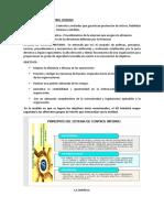 Conceptos de Auditoría operacional