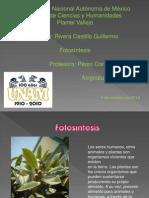 G.rivera Present.fotosin