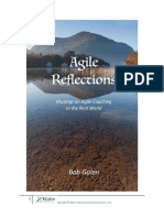Agile Reflections for Agile Coaches