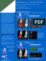 Burn Wound Imaging- Dr. Rao Papineni