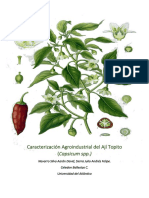 Caracterización Agroindustrial del Ají Topito (1).docx