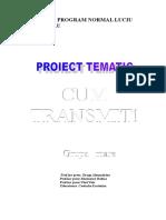 Proiect Tematic Cum Transmit