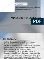 analise de agrupamento.pptx