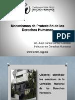 Mecanismos Protección DD HH