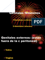 Genitales Femeninos Actual
