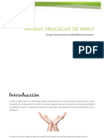 manual musculo T.O.docx