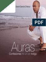 libro-auras-david-2008.pdf