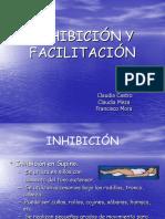 Inhibición y Facilitación Bobath 1