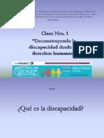 Palacios Discapacidad Ddhh