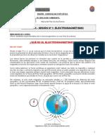SEPARATA_ELECTROMAGNETISMO