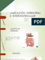 trabajo grupal embriologia