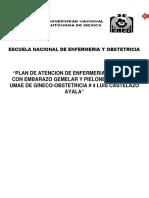 PAE.docx