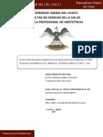 Lizbet_Blanca_Tesis_bachiller_2017.pdf