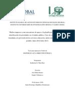 ADP 514, TESIS, K.THEN, 14-0067 (1).pdf