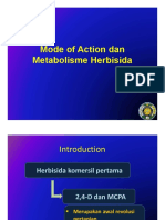Modeof Action _13122018.pdf