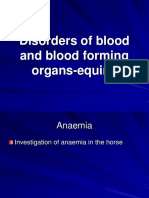 Disorders of Blood and Blood Forming Organs in Equine