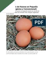Producción de Huevos en Pequeña Escala.docx