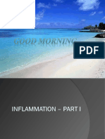 inflammation-140510134003-phpapp02.pdf