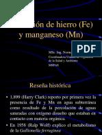 Remocion de Hierro y Manganeso.pdf