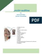 Presentacion Funcion auditiva